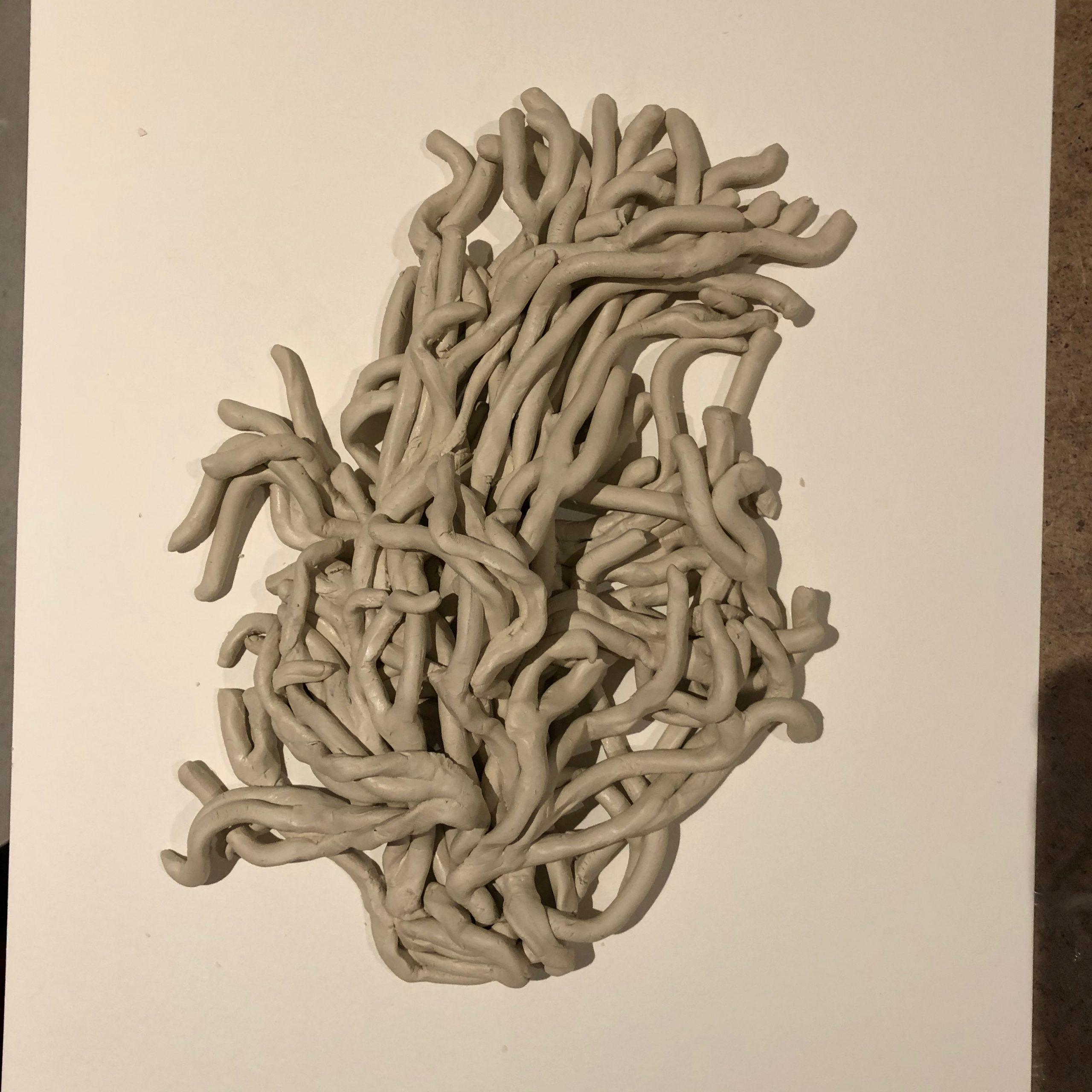 Codium Fragile Corinne Vorwerk Smaal Artwork 03