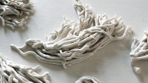 Codium Fragile Corinne Vorwerk Smaal Artwork 12b