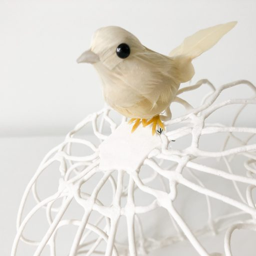Codium Fragile Corinne Vorwerk Smaal Artwork 04